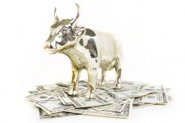 Obligacje korporacyjne a fundusze inwestycyjne