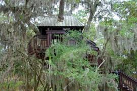 Jak zbudować domek na drzewie?