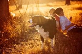 Jakie zwierzątko dla dziecka?