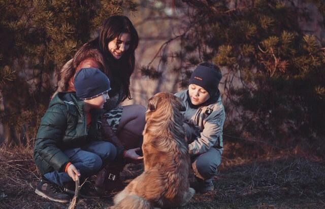 Rodzina z psem