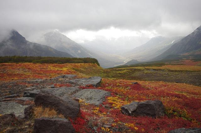 górzysta tundra