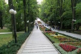 Uzdrowisko Polanica Zdrój – dlaczego warto wypoczywać w Polanicy?