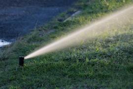 Jak podlewać trawnik? Automatyczne podlewanie trawnika czy podlewanie z węża ogrodowego?