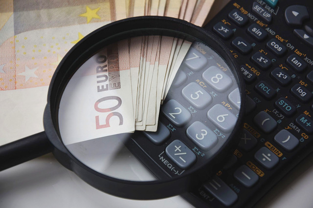 Lupa na kalkulatorze