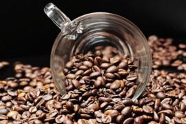 Co to znaczy, że kawa jest świeżo palona?